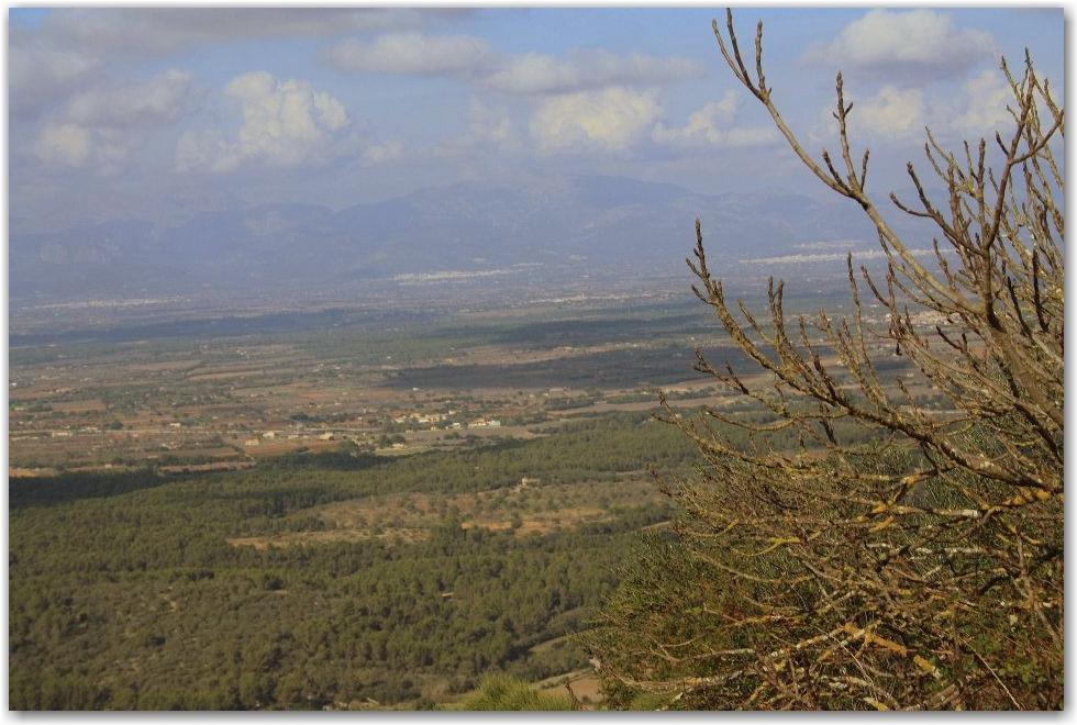view from Santuari de Nostra Dona de Cura, Mallorca