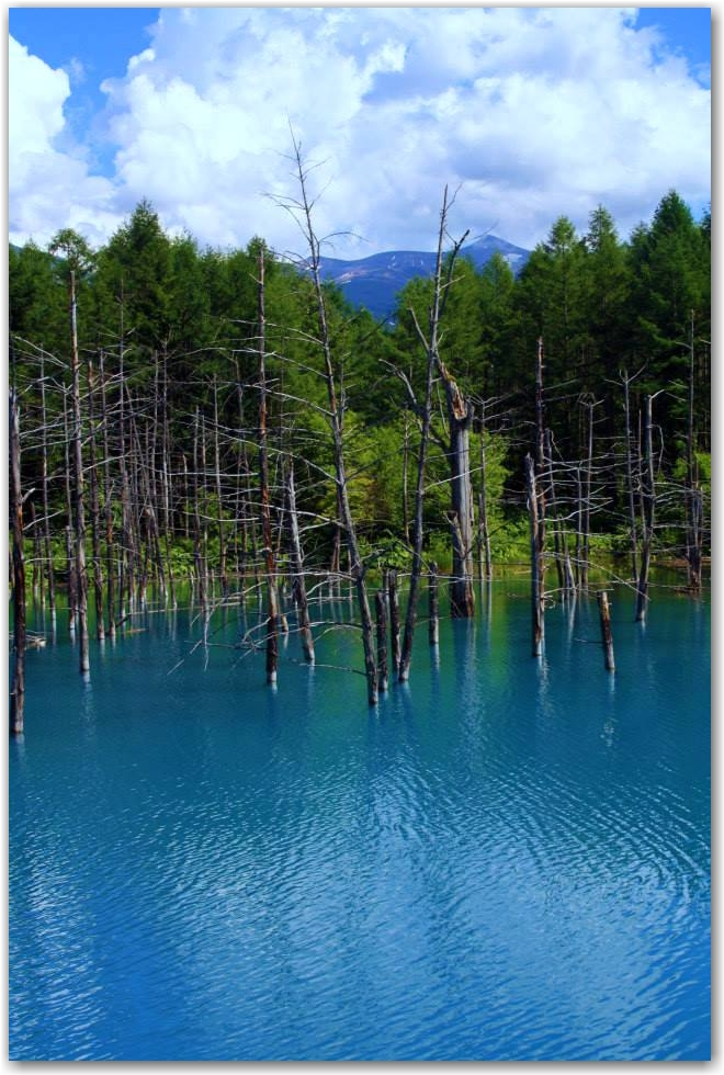 capture the colour blue: blue lake, biei, hokkaido