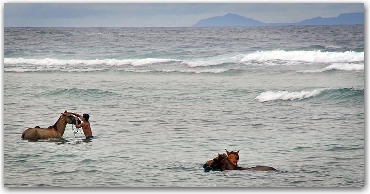 Men and horses, Gili Trawangan