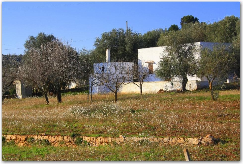 Puglia Scenery