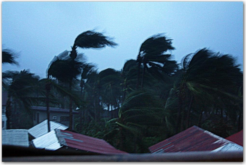 stories from super typhoon haiyan survivors